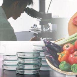 食品に混入した異物が判明 (通報から1か月後)